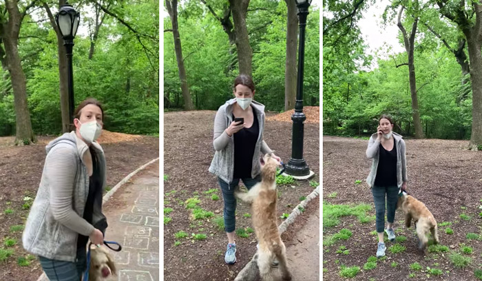 Amy Cooper, Central Park dog-walker at center of race storm, is fired