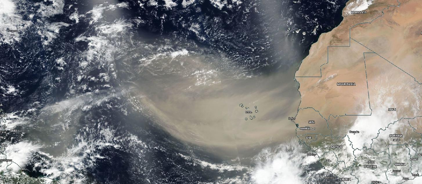 A 'Godzilla' dust cloud from Sahara Desert is nearing US Gulf Coast