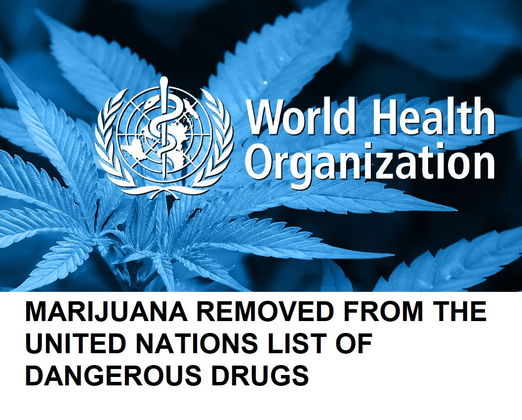 UN removes cannabis from list of dangerous drugs, opening door for further research and legalization