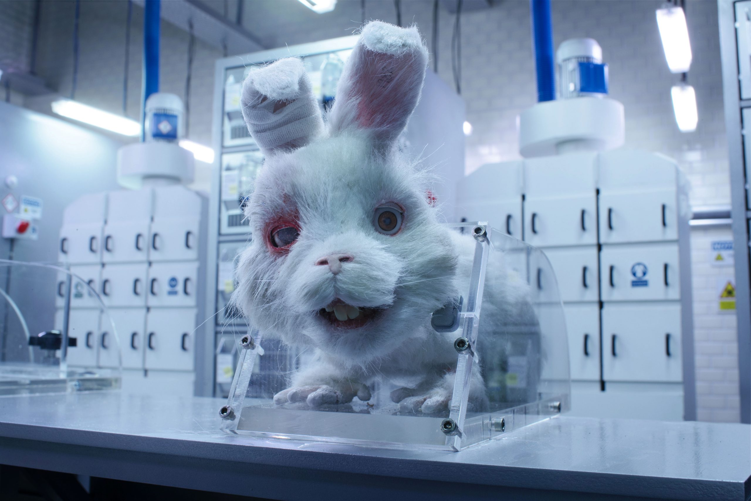 'Save Ralph', an animated short film, drops bombs on animal testing for cosmetic products, finds support from Unilever