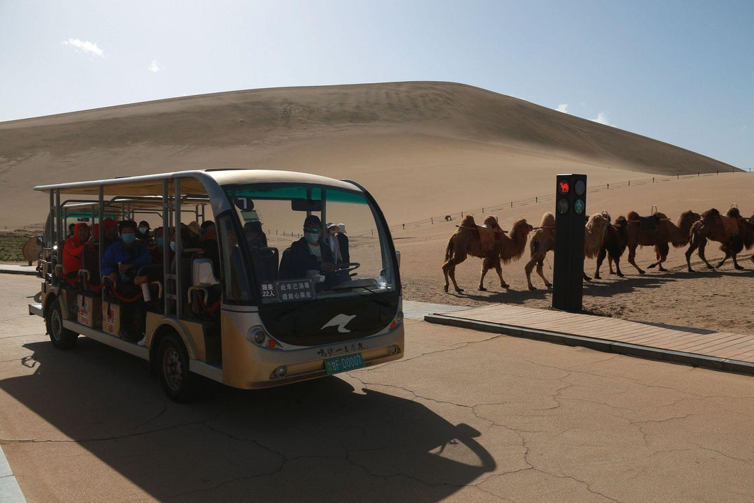 Stop! Camel time! China creates the world's first traffic signal for the humped beasts